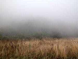 В воскресенье горы были затянуты вязким, очень красивым туманом.